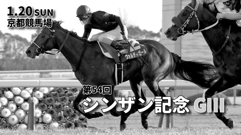 第54回日刊スポーツ賞シンザン記念(GⅢ)攻略データ(1)