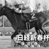 第67回日経新春杯(GⅡ)最終予想