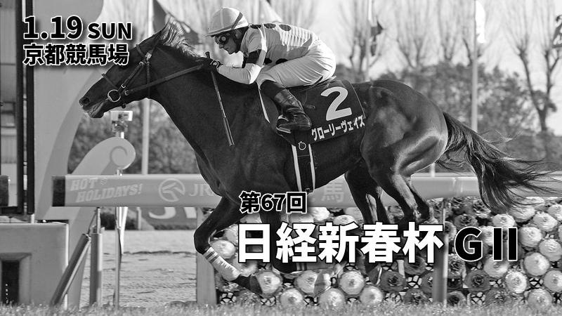 第67回日経新春杯(GⅡ)攻略データ(2)