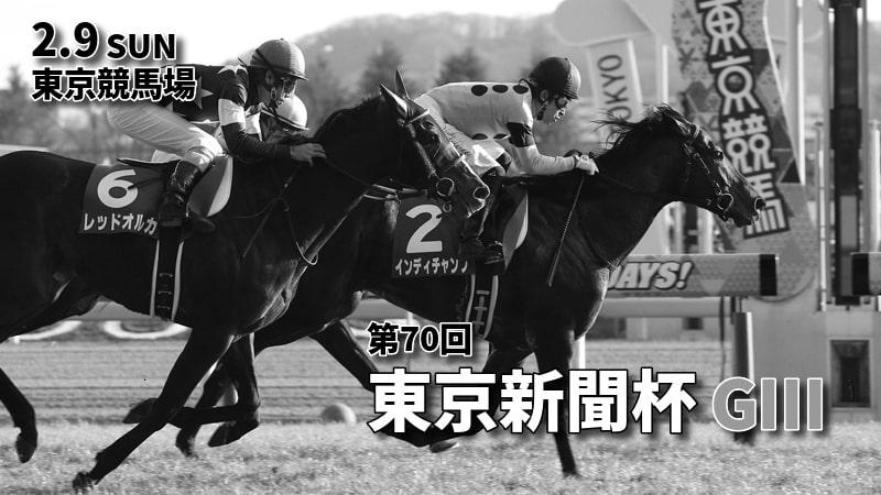 第70回東京新聞杯(GⅢ)攻略データ(2)