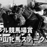第38回ローレル競馬場賞中山牝馬ステークス(GⅢ)攻略データ(3)