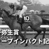 第57回報知杯弥生賞ディープインパクト記念(GⅡ)攻略データ(2)