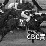 第56回CBC賞(GⅢ)攻略データ(1)