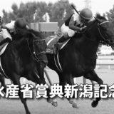 第56回農林水産省賞典新潟記念(GⅢ)攻略データ(1)