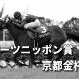 第59回スポーツニッポン賞京都金杯(GⅢ)攻略データ(3)