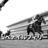 第72回阪神ジュベナイルフィリーズ(GⅠ)攻略データ(2)