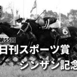 第55回日刊スポーツ賞シンザン記念(GⅢ)攻略データ(2)