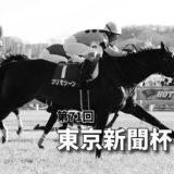 第71回東京新聞杯(GⅢ)攻略データ(3)