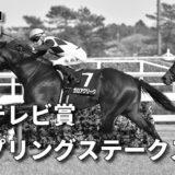 第70回フジテレビ賞スプリングステークス(GⅡ)攻略データ(1)
