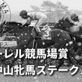 第39回ローレル競馬場賞中山牝馬ステークス(GⅢ)攻略データ(1)
