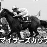第52回読売マイラーズカップ(GⅡ)攻略データ(1)