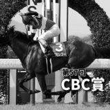 第57回CBC賞(GⅢ)攻略データ(3)