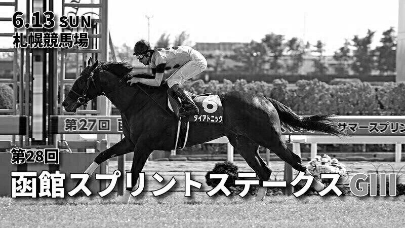 第28回函館スプリントステークス(GⅢ)攻略データ(3)