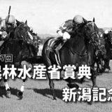 第57回農林水産省賞典新潟記念(GⅢ)最終予想