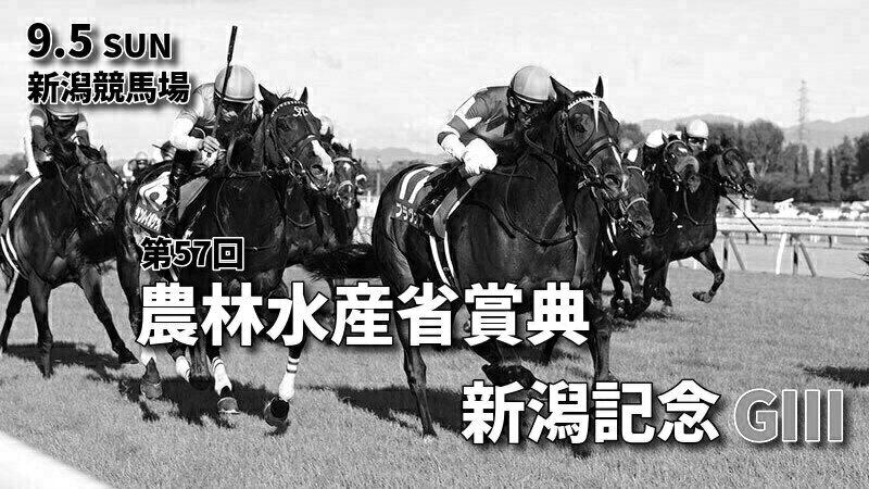 第57回農林水産省賞典新潟記念(GⅢ)攻略データ(2)